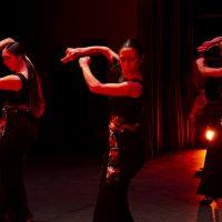 Ichiban en escena. Flamenco